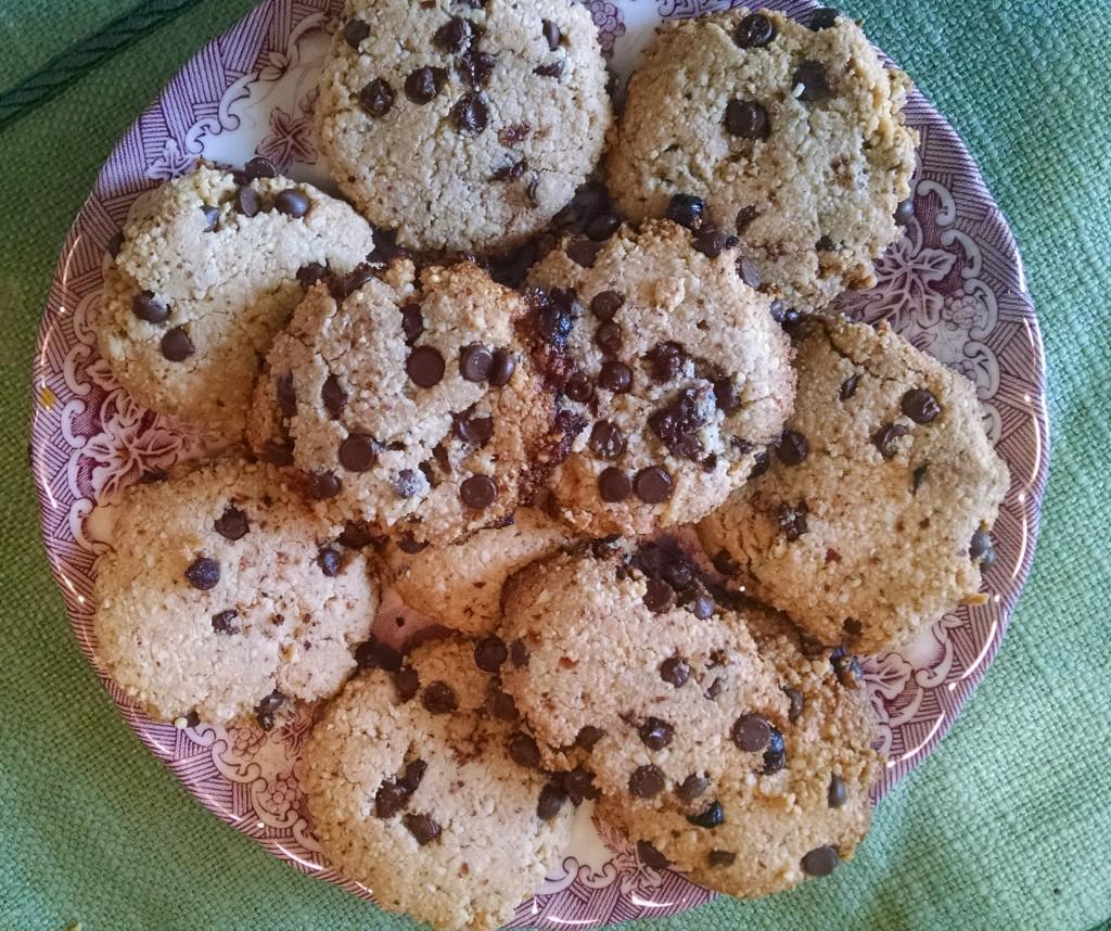 fodmap cookies (2)
