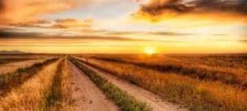 country-road-4-1024x640.jpg