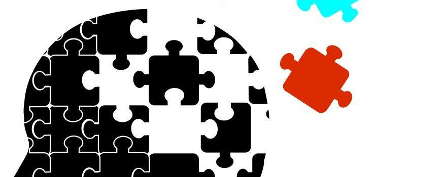 memory-bank-puzzle-875x1024.jpg